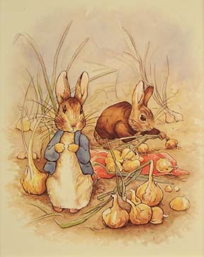 43076 Peter Rabbit & Onions 9 x 12