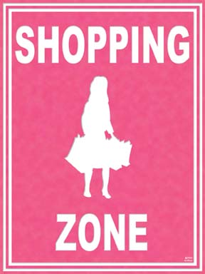 21714 Shopping Zone 18 x 24