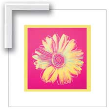 08363 Warhol Daisy, Fuschia and Yellow 20 x 20