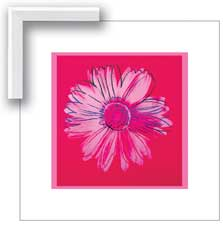 08364 Warhol Daisy, Crimson and Pink 20 x 20