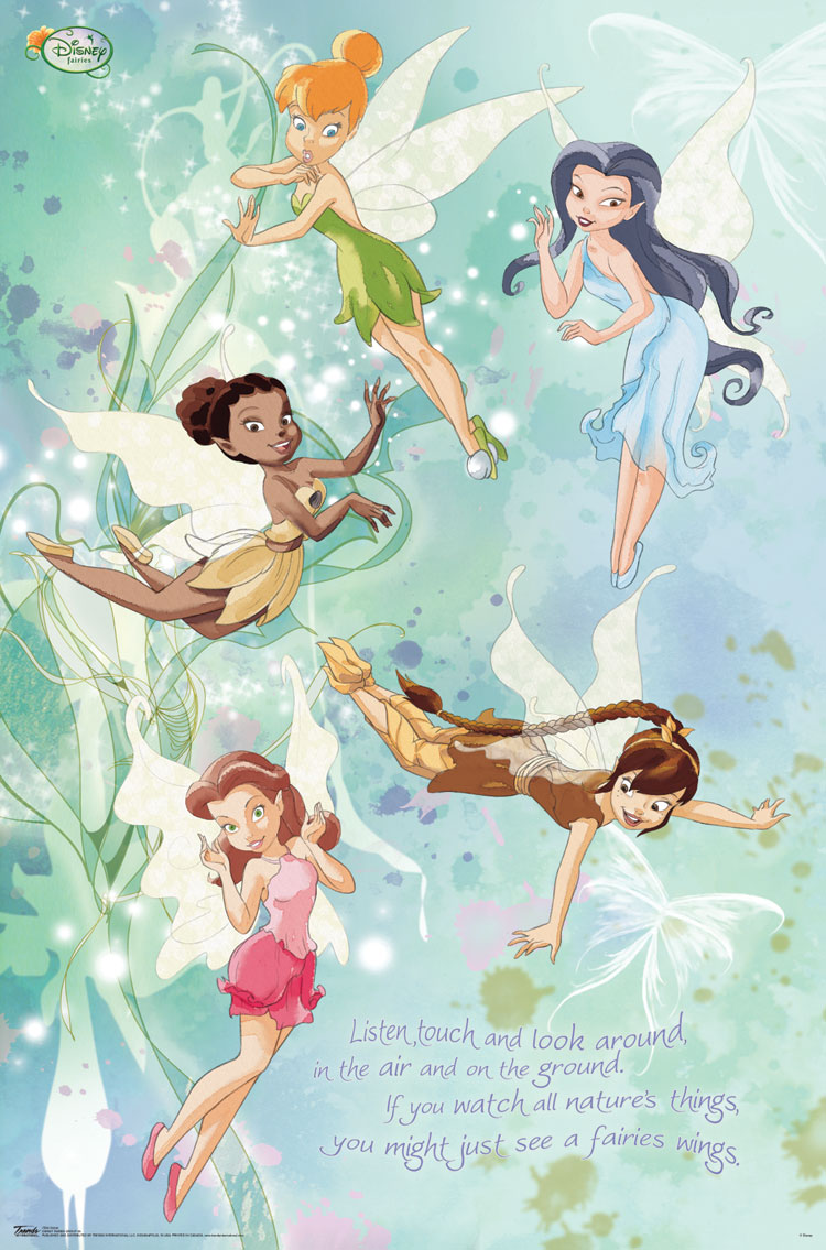 10060 Disney Fairies - Group 23 x 34