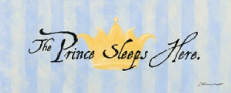 65062 Prince Sleeps Here 20 x 8