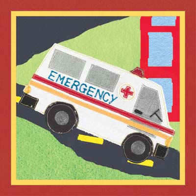 21523 Rescue Ambulance 12 x 12
